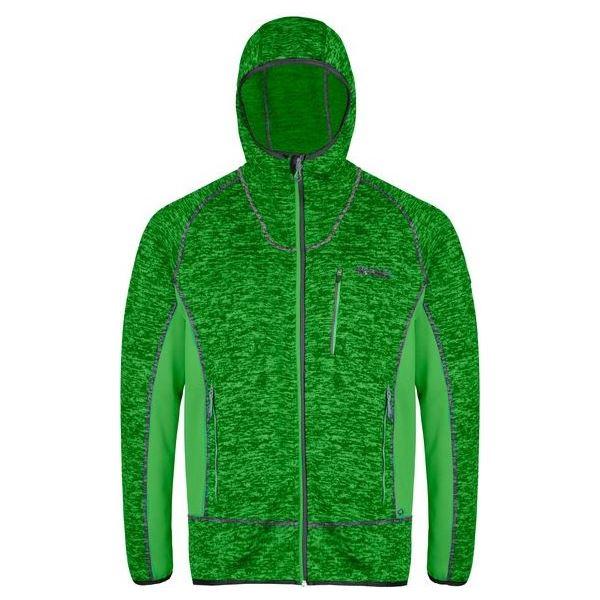 Pánska fleecová mikina Regatta CARTERSVILLE V zelená