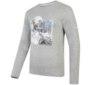 Pánske tričko Dare2b COALSCE sivá